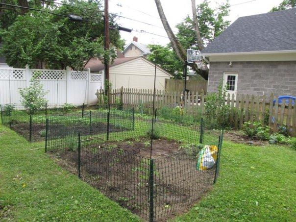 Mimi's garden in June