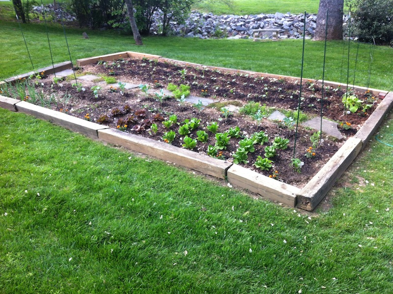 The Garden is In!