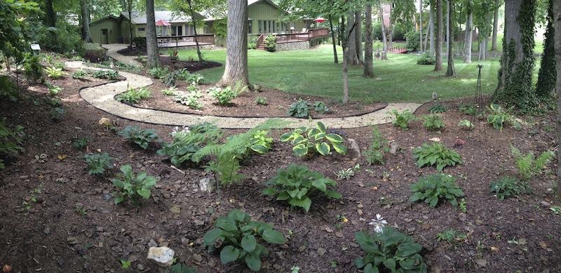 My Rescue Garden